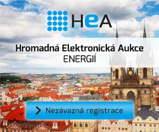 Aukce elektřiny a plynu
