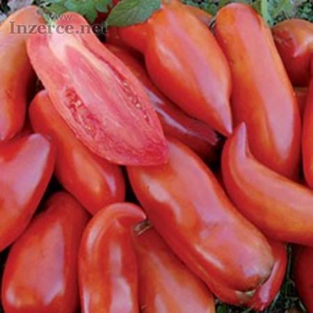 Rajče Federle - semena
