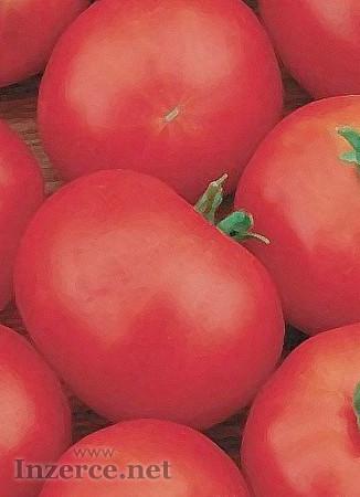 Rajče Hana - semena