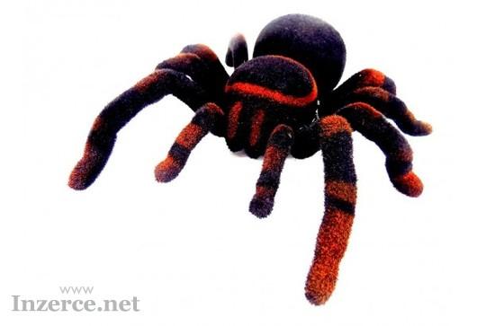 RC pavouk Tarantule Výprodej