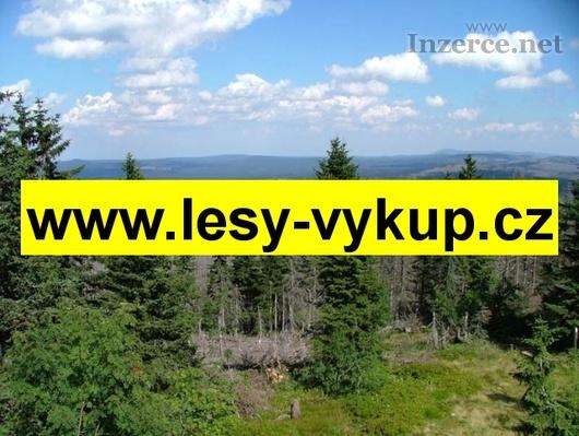 Výkup lesů, koupíme lesy po celé ČR