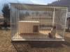 Nový pozinkovaný kotec pro psa - foto 2