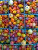 Rajče duhová směs - semena 50 ks - foto 5